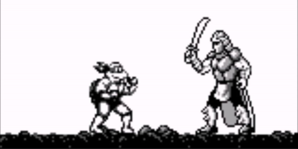 Teenage Mutant Ninja Turtles: Fall of the Foot Clan
